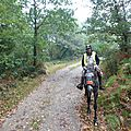 TREC Grand Fougeray de Bretagne (6)
