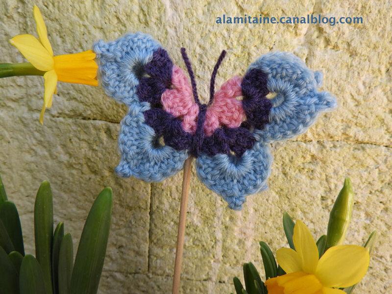 papillon Hélène 02