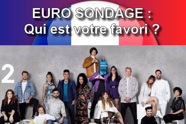 Euro Sondage France 2021