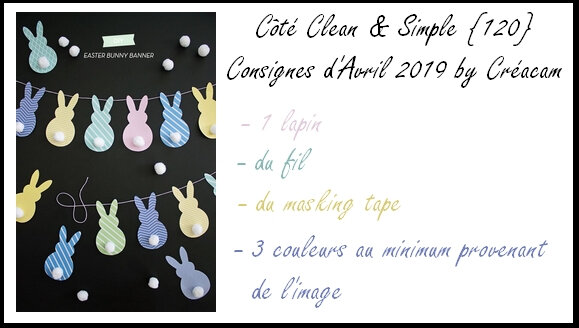 C&S 120 consignes avril 2019