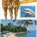 AA0113-L'île de Noirmoutier