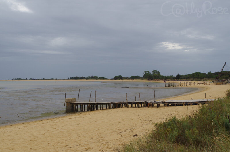 && plage Fort Royer (3)