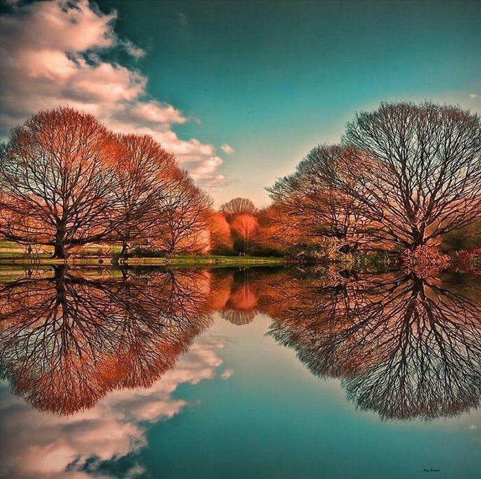 w_amazing-reflections-optical-illusions-38-5836d9346d198-700