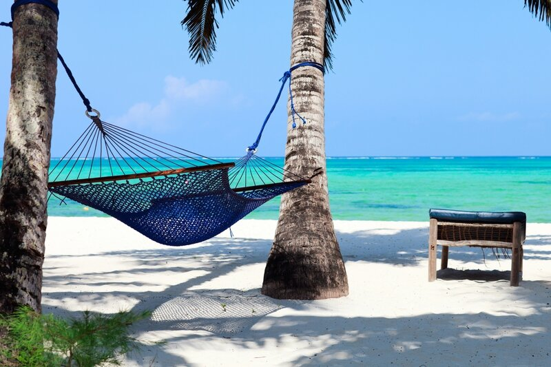 Perfect-tropical-paradise-beach-of-Zanzibar-island-with-palm-trees-and-hammock1