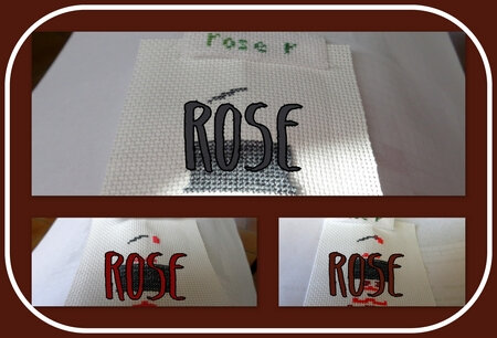 rose_saljul19_col1