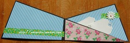 Carte (8)