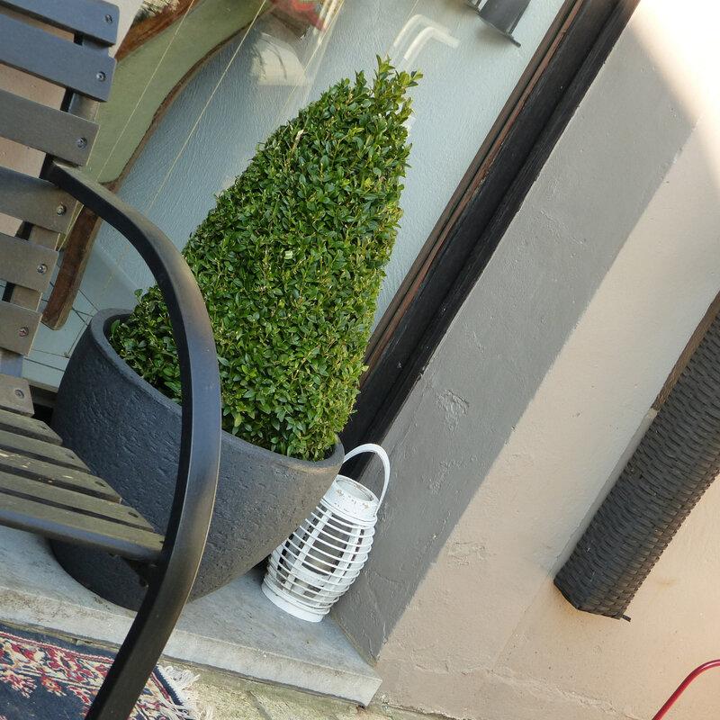 aaa jardin3