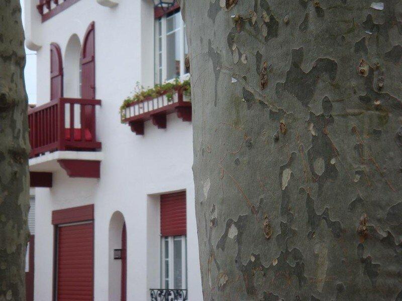 Rue Gambetta St Jean de Luz