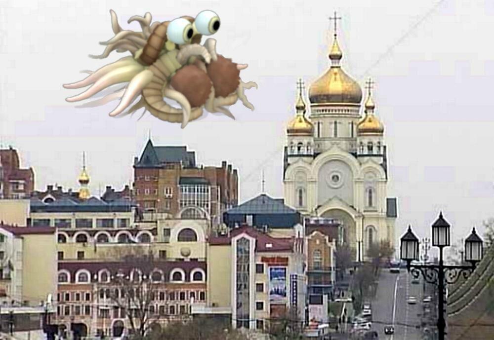0 0 Khabarovsk