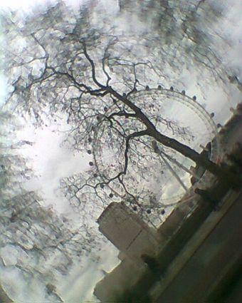 Photo0008-bis