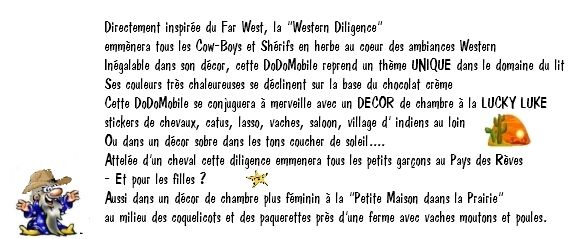 western_bulle