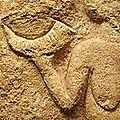200px-Venus-de-Laussel-detail-corne détail