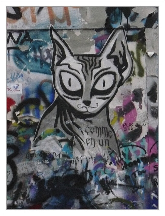 graff Gainsbourg chat