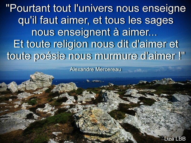 16 Alexandre Mercereau
