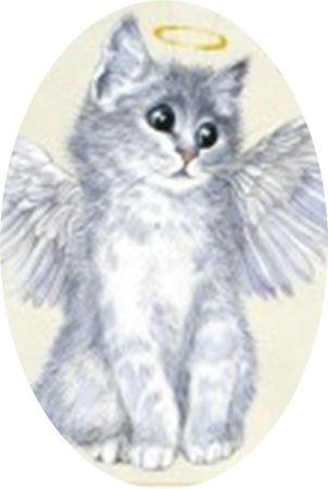 carte-postale-chatanas-et-ange-minou-de-severine-pineaux