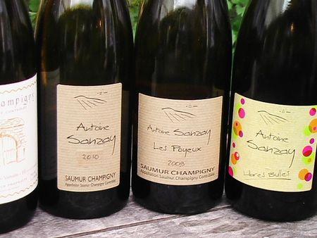Les_bouteilles_d_Antoine_Sanzay