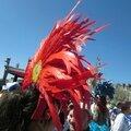 Mon truc en plumes au carnaval de nantes le 12 avril 2015 (4)