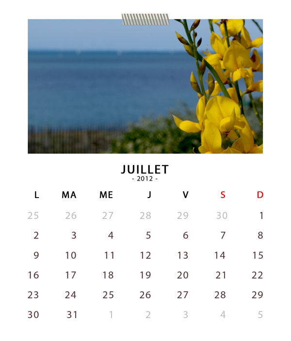 07_sc_cdcasecalendar2012_july