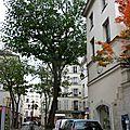 LE CARRE RIVE GAUCHE 095