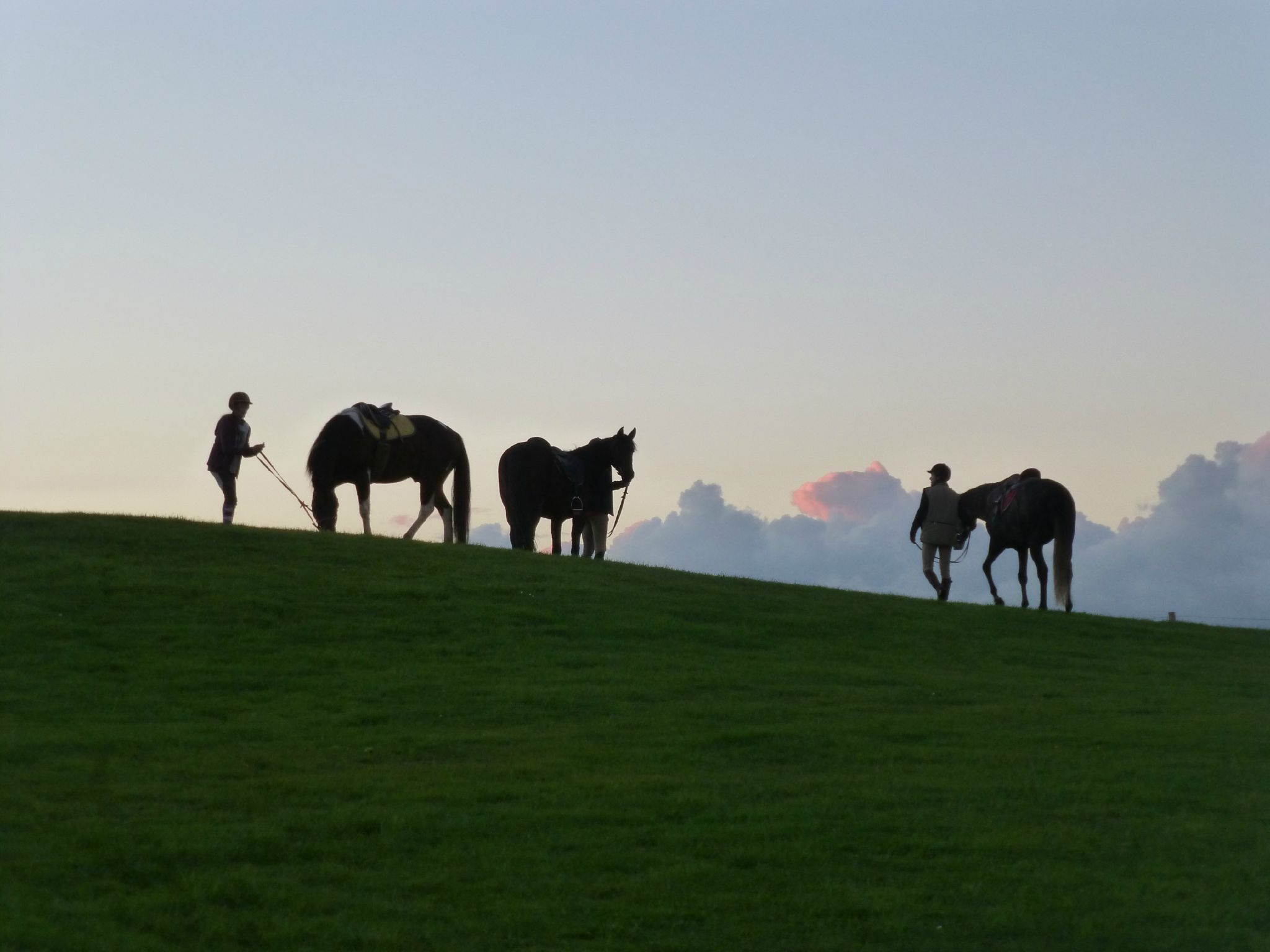 balade liberté - Mesnil Ozenne à cheval (58)