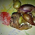 legumes recup (7)