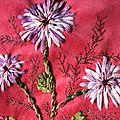 fleurs violettes 005