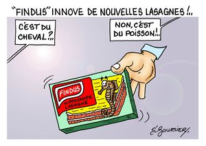 FINDUS web