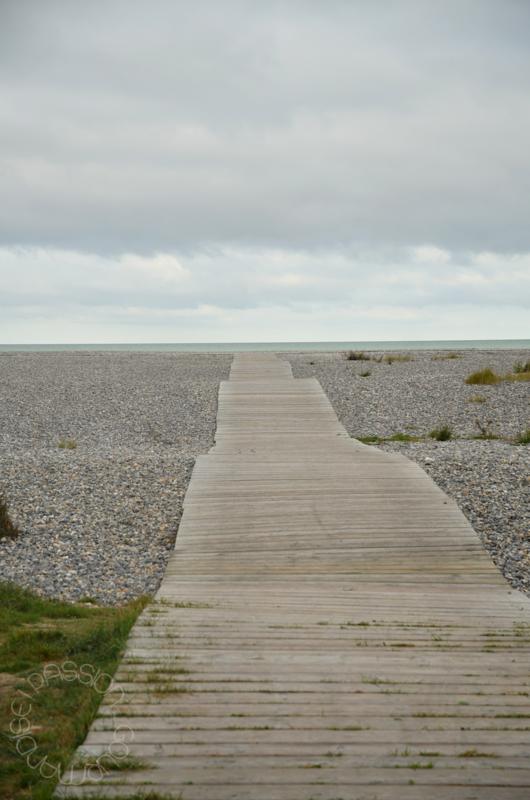 Cayeux sur Mer, galets_1