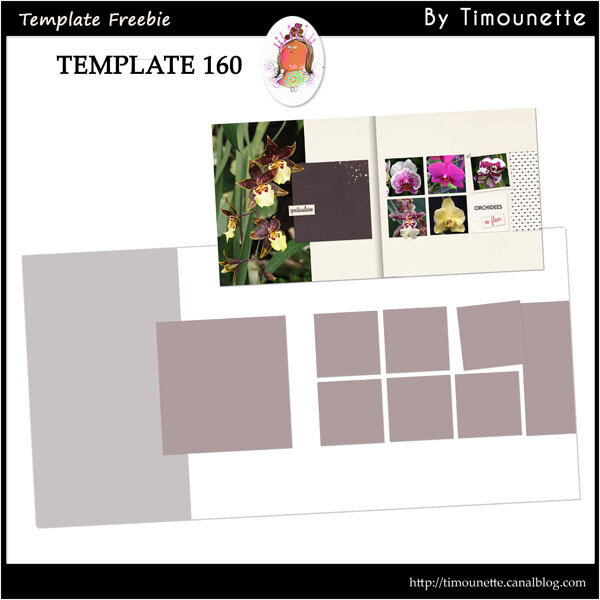 preview Template 160 by Timounette