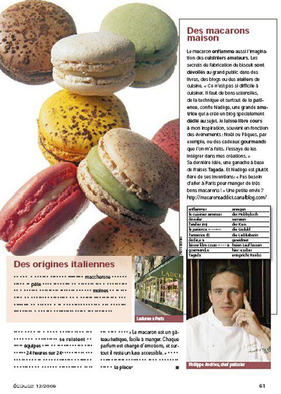 article_macaron2