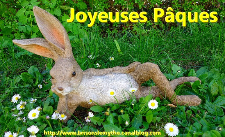 lapin-paques-marguerites