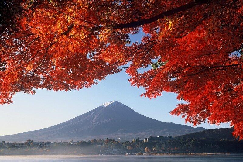automne japon2