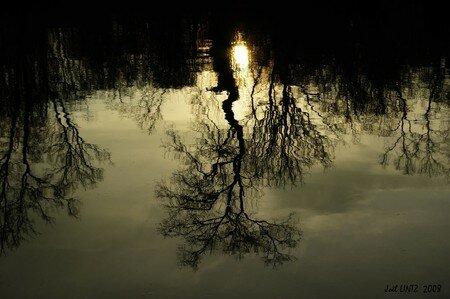 reflets1