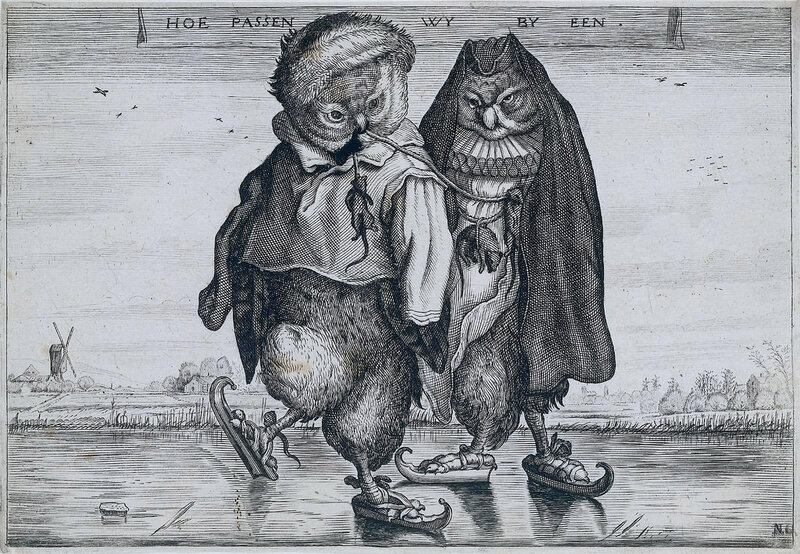 patinoire owls
