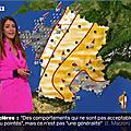 virgiliahess02.2020_01_15_meteolejournalpremiereeditionBFMTV