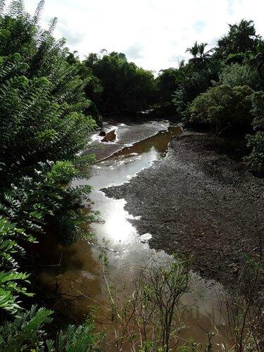 Mayotte (276)