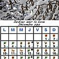 Jardiner avec la lune au mois de décembre 2012
