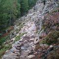 5-Lac de Nino-Sentier rocailleux