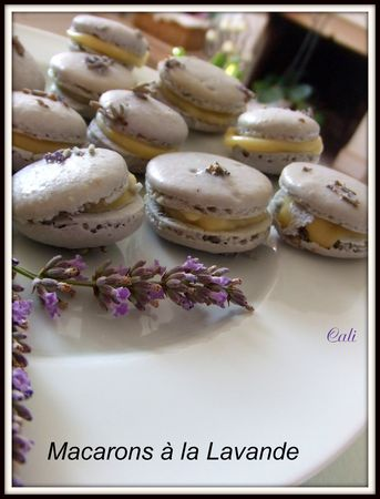 Macarons___la_Lavande___019