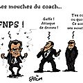 Mouches du coach JPEG