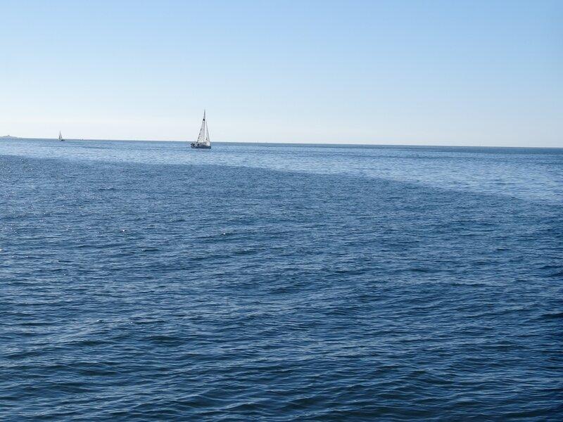 Croisière Découverte de l'archipel des Glénan