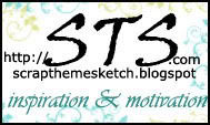logo_STS