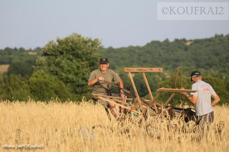 Photos JMP©Koufra 12 - Cornus - Moisson à l'ancienne - 22072019 - 0206
