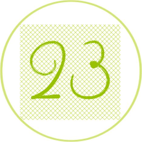 23 vert