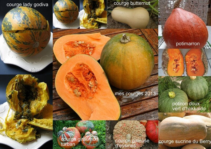 courges 2013