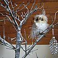 Madame la chouette posée sur sa branche......