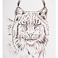 N- COLORIAGES ANIMAUX - ILLUSTRATIONS NATURE