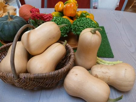 courges butternut (6)