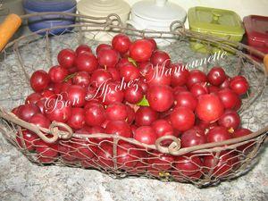Prunes cueillette et confiote jeudi 12 juillet 2012 002