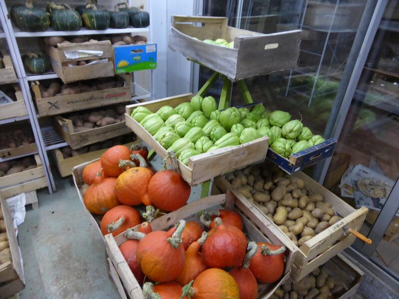 4- réserve, courges, chayottes, pommes de terre, oignons (2)